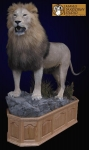 African lion full mount, Lifesize African Lion, African Lion Taxidermy