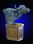 Cape Buffalo, Pedestal Mount on Finished Walnut Base with Raised Panels