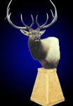 Elk Pedestal Mount on Oak Pyramid