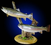 Brown Trout Mount & Rainbow Trout Mount on Tabletop Base