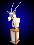 Gemsbok, Pedestal Mount on Finished base with Backskin Inlays.