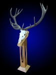 Red Stag European Mount